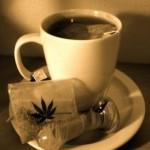 Cómo hacer infusión de Marihuana