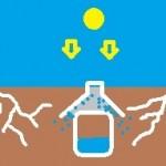 Astuce pour maintenir vos plantes hydratées
