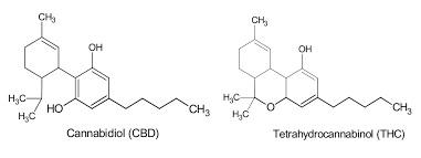 Cannabis VS Cannabinoides industrializados
