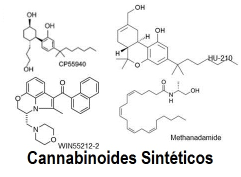 Cannabis VS Cannabinoides industrializados