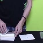 Faire germer vos graines de cannabis dans du sopalin