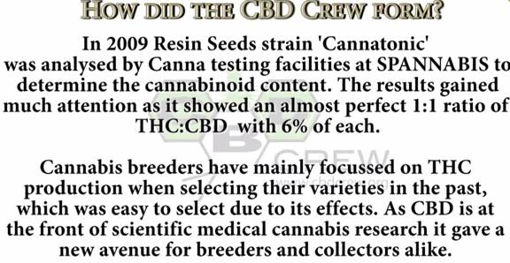 Las variedades ricas en CBD