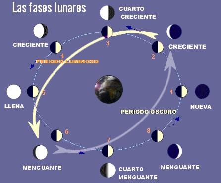 El calendario lunar for Hoy es cuarto creciente