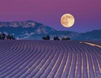 El calendario lunar