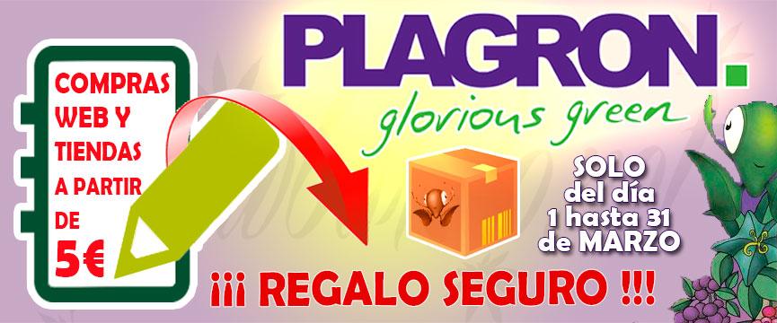 Campaña de Regalos Plagron