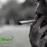 Israel: el 90% encuentra alivio con el cannabis medicinal