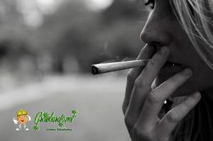 El cannabis medicinal en Israel