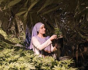 Conoce a las monjas de la marihuana