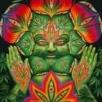 ¿El cannabis aumenta la creatividad?