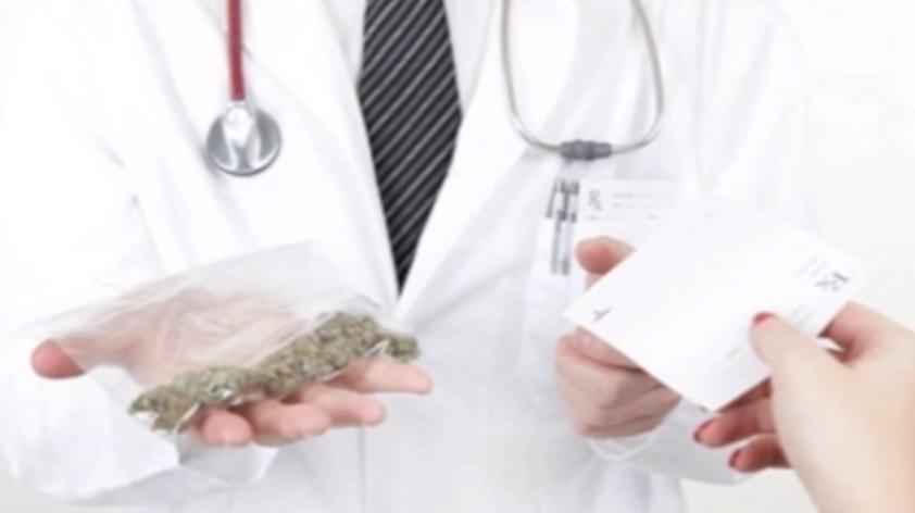 10 cosas que no sabes sobre el cannabis
