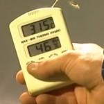 Temperaturas altas y plagas