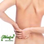 El mejor tratamiento contra la fibromialgia es la marihuana