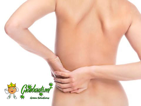 mejor tratamiento contra la fibromialgia marihuana