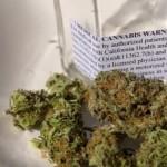 Contaminantes del cannabis