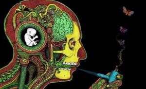 Tópicos sobre el cannabis