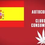 Guanyar: Alicante legalizará los clubes