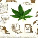 Todos los usos del cannabis