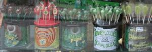 Formas legales de consumir marihuana