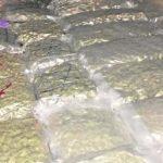 Las mejores pilladas trasportando marihuana