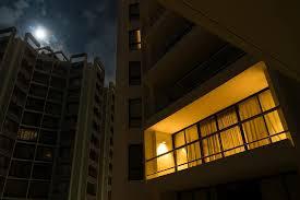 cultivo en terrazas y balcones