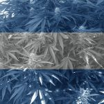 Cannabis gratis a los pacientes