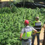 22kg de marihuana para consumo propio