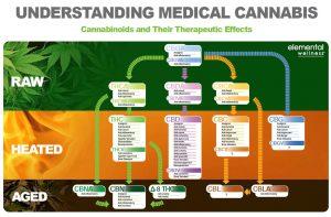 quel cannabinoide pour soigner quoi?