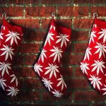 Mujer droga involuntariamente a su familia en Navidad