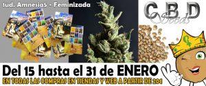 semillas gratis de cbd seeds imagen promocion