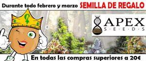 mas semillas de apex seeds banner oficial de la promocion
