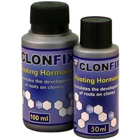 como hacer esquejes sin clonex foto de clonfix