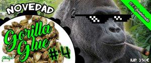 gorilla glue 4 variedad a granel