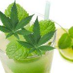 Cannabis Mojito – Prep and Recipe