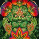 Does Cannabis Increase Creativity?