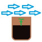 How full should my flowerpot be?