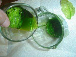 verduras para preparar jugo de clorofila