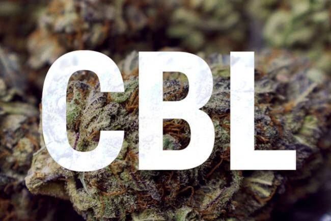 ¿que es el cannbiciclol (cbl)?
