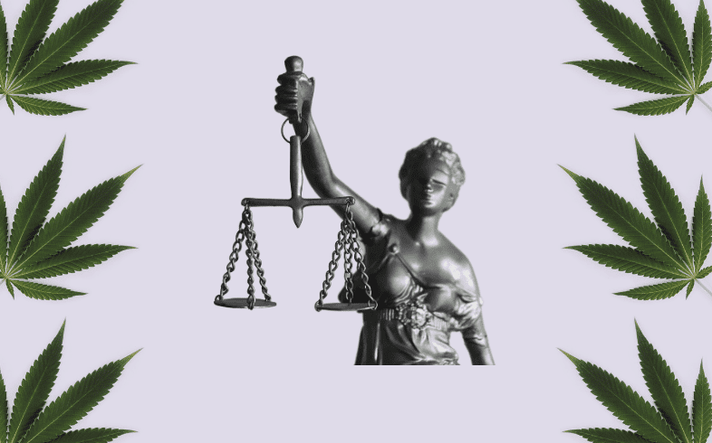 Es legal cultivar marihuana en España
