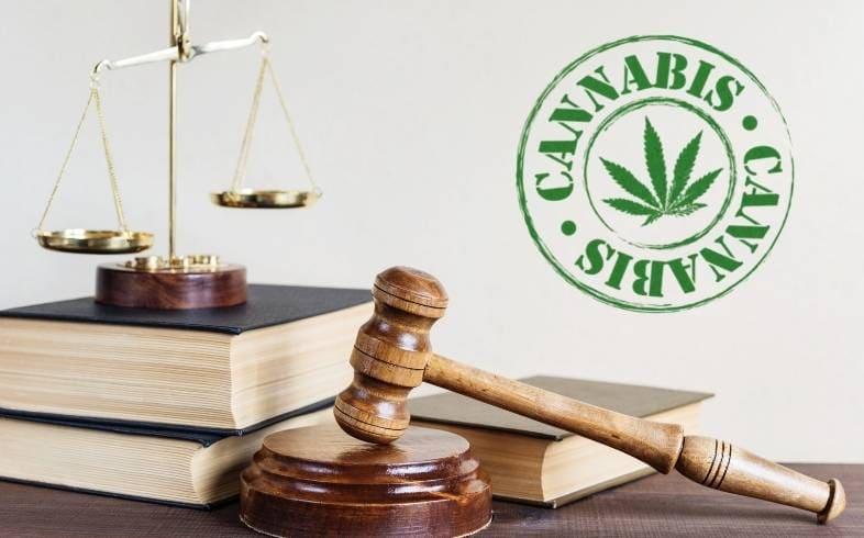 regularizacion del cannabis