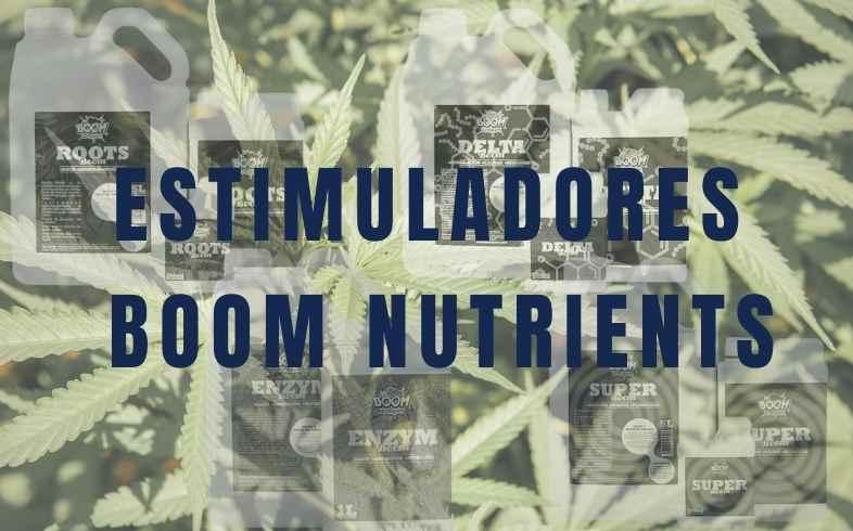 estimuladores de boom nutrients