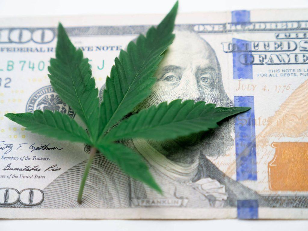 interesting facts about marijuana