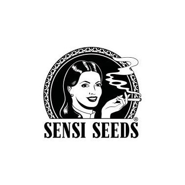 Sensi Seeds Regular