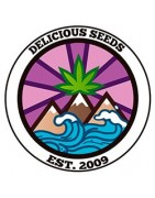 Delicious Seeds Bank Feminizadas