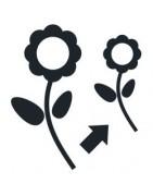 Accesorios para cultivo de Madres y Esquejes