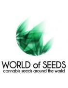 Graines féminisées de World of Seeds