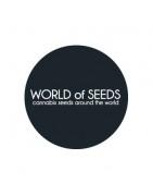 World of Seeds Féminisées