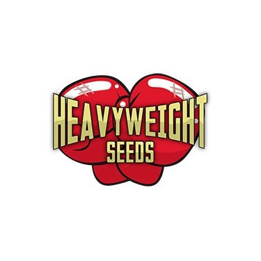 Heavyweight Seeds auto