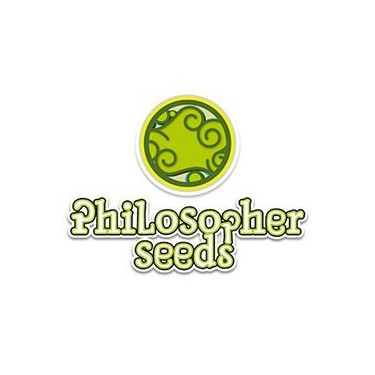 Philosopher Seeds auto