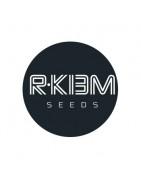 Graines de cannabis R-Kiem Seeds régulières