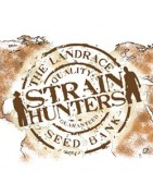 Strain Hunters Seed Banks The Landrace